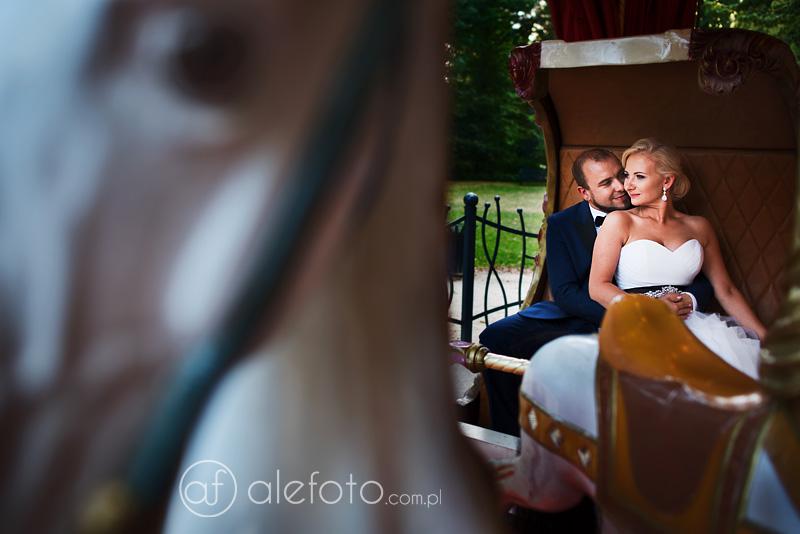 fotograf ślubny - plener we wrocławiu