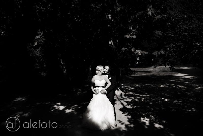 Plener ślubny w ostrym słońcu | zdjęcia ślubne Wrocław