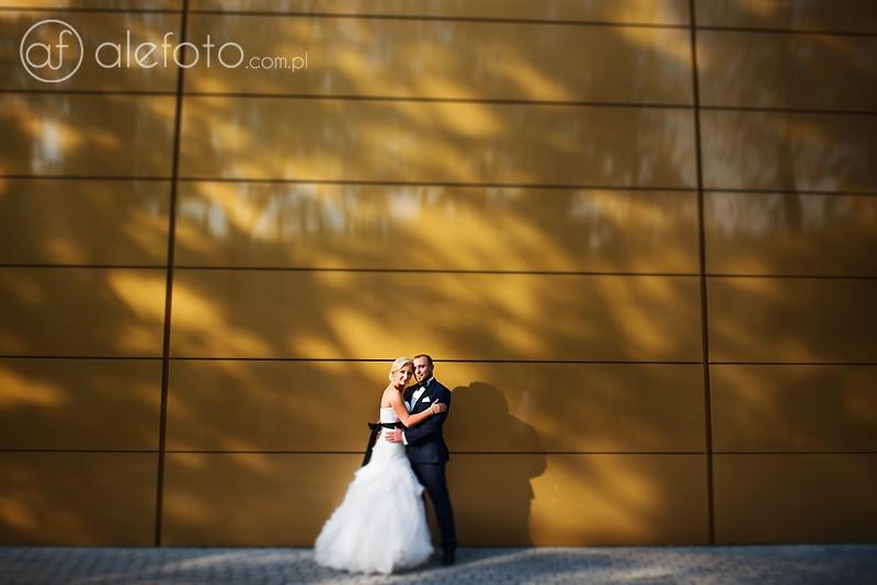 romantyczne zdjęcia ślubne wrocław